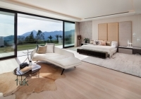 Large open space master bedroom
